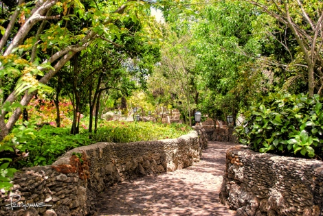 20080523_Altos_Chavon01-Edit