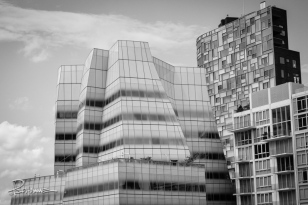 20130810_The_High_Line25