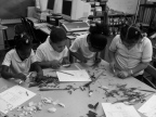 """Students """"dissected"""" various flowers and identified their parts. We had fun that day and the classroom smelled of flowers the entire day!"""
