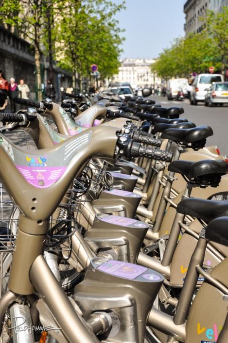 Bikes for rent in Paris.