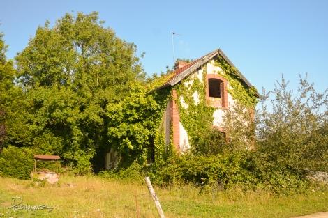 Abandoned-14